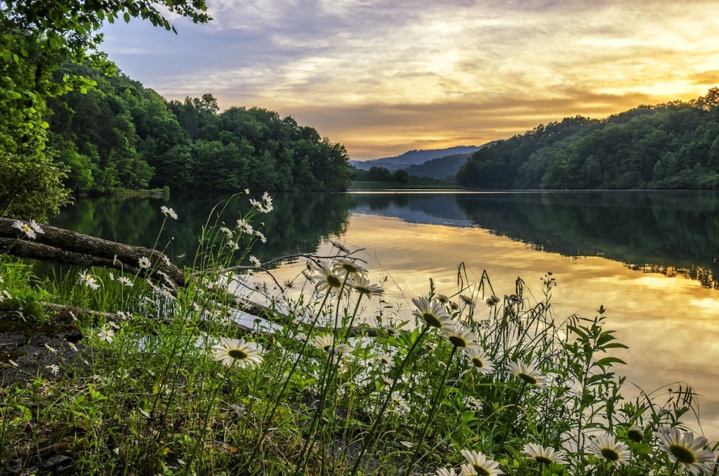 image of the shore of a river in appalachian region of kentucky at sunset